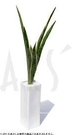 インテリアグリーン フェイクグリーン 造花 人工観葉植物 アートグリーン アートフラワー イミテーショングリーン インテリアプランツ リーフアート 造花 鉢 光触媒 消臭 抗菌 空気清浄サンセベリア スタッキー