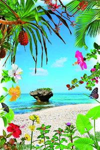 ポストカード5枚で【送料無料】PSC-203 黒島 きのこ岩と花と植物 美しい風景写真のポストカードや絵はがきはいかがですか? クリスマスカード残暑見舞い年賀状 グリーティングカード 礼状
