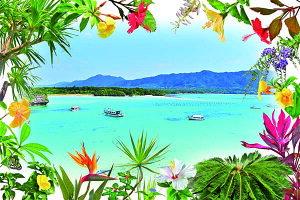 ポストカード5枚で【送料無料】PSC-202 石垣島 川平湾と花と植物 美しい風景写真のポストカードや絵はがきはいかがですか? クリスマスカード残暑見舞い年賀状 グリーティングカード 礼状