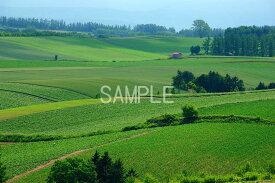風景写真ポスター 北海道美瑛 赤い屋根の家 osp-349