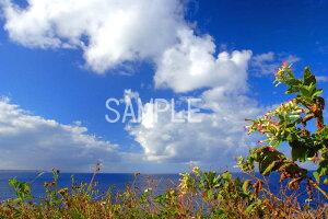 風景写真ポスター 沖縄 北大東島の海 青い空と青い海  風景 ポスター 風水 玄関 に 飾る 絵 壁掛け インテリア 絵 海 タペストリー  osp-k10