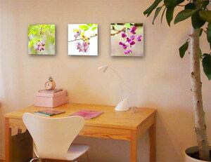風景写真パネル あけびの花フォトパネル 27.3×27.3cm IBA-a01-S3 アート ポスター 風景,絵画 アート,絵画 壁掛け アート,タペストリー 壁掛け,インテリア アートパネルの壁飾り,お祝いギフトに【