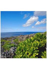 ポストカード 南大東島の海6 沖縄 風景写真 どれでも5枚で【送料無料】PSC-79 絵はがき 絵葉書 クリスマスカード 暑中見舞い 寒中見舞いグリーティングカード 年賀ハガキ 年賀状などにどうぞ。【RCP】