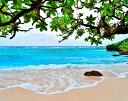 風景写真パネル 沖縄 波照間島の海 ブドゥマリ浜03 珊瑚礁の島 アートパネル ウォールアート インテリア 壁掛け 壁飾…
