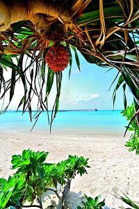 風景写真パネル 沖縄 宮古島 パイナガマ海空すこやか公園の浜19 アートパネル ウォールアート 壁掛け 壁飾り インテリア 風水 プレゼント お祝い ギフト 贈答品 海の風景ポスター 新築祝い