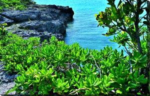 風景写真パネル 沖縄 宮古島 パイナガマ海空すこやか公園の浜02 側面画像有 写真パネル アートパネル ウォールアート 壁掛け 壁飾り インテリア 風水 プレゼント お祝い ギフト 贈答品 海の