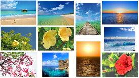 ポストカード 沖縄の島々 お得な11枚セット 送料無料 美しい風景写真 ポストカード 絵はがきは 風景 写真 ギフト お祝い クリスマスカード残暑見舞い年賀状 グリーティングカード 礼状や引っ越し挨拶などにも。PST-set-oknum11s