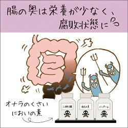 腸の奥は悪玉菌