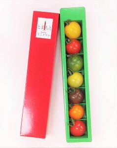 7色カラフルミニトマト 熊本県産7粒