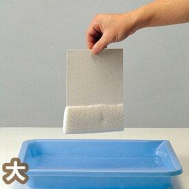 [ ゆうパケット可 ] スポンジペーパー 200×290mm 【 造形紙 スポンジ 工作紙 】