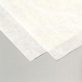 雲龍紙 薄口 10枚組 白 【 和紙 雲龍 工作紙 製作 】