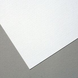 水彩紙 キャンバス画用紙 八つ切 100枚組 【 描画用紙 絵画 スケッチ 水彩 用紙 】