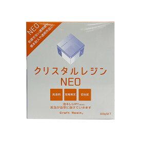 クリスタルレジンNEO 300gセット 【 夏休み 工作 樹脂 注型用 】