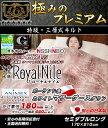 Royalnile_3sou_sw1