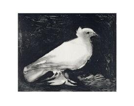 【ピカソ アートポスター】鳩1949年(281×358mm)