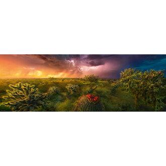 HEYE Puzzle・헤이 퍼즐 29817 Ed. Humboldt : Stormy Horizon 1000 피스