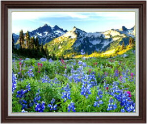 山麓の花々 F30サイズ 【油絵 直筆仕上げ】【額縁付】 油彩 風景画 オリジナルインテリア絵画 風水画 ブラウン額縁 1070×887mm 送料無料