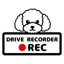 トイプードル ドライブレコーダー ステッカー 【Mサイズ】かわいい おしゃれ ドラレコ 搭載車 煽り運転 事故防止 安全…
