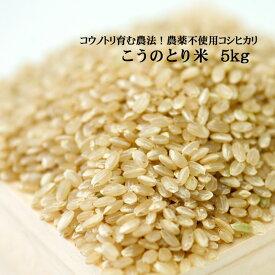 令和元年産 こうのとり米(5kg)白米 玄米 農薬不使用 コウノトリ育む農法 有機肥料 特別栽培 兵庫県産コシヒカリ
