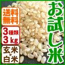 お米 お試しセット兵庫県産(合計3kg)有機肥料【当日精米】【送料無料】