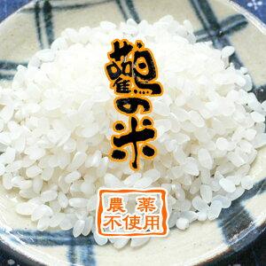 【令和2年産】玄米 10kg 白米 分つき米 農薬不使用 鸛の米 コシヒカリ コウノトリ育む農法 兵庫県産【送料無料】