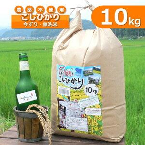 【新米】玄米 白米 今ずり米 無洗米 農薬不使用 コシヒカリ 令和2年産【10kg】