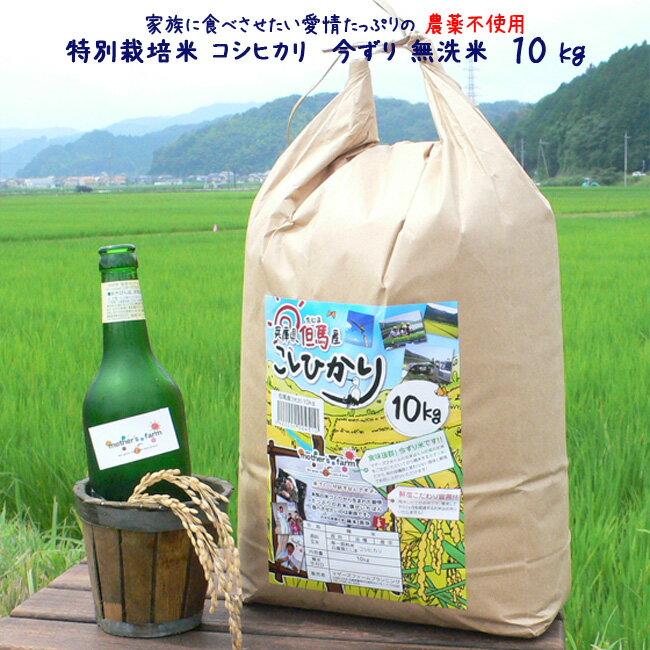 平成29年産 玄米 白米 今ずり米 無洗米 農薬不使用 コシヒカリ【10kg】