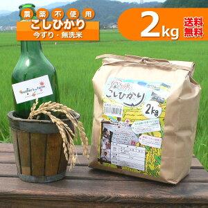 【新米】無洗米(2kg)玄米 白米 今ずり米 農薬不使用 コシヒカリ 令和3年産【送料無料】