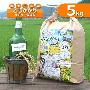 令和元年産 玄米 白米 今ずり米 無洗米 農薬不使用 コシヒカリ【5kg】