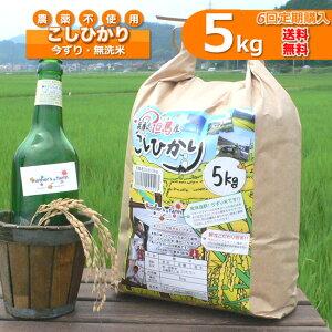 【定期購入】5kgx6回 令和元年産 玄米 白米 今ずり米 無洗米 農薬不使用 コシヒカリ