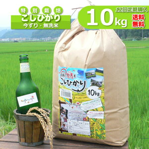 【定期購入】10kgx12回 令和元年産 玄米 白米 今ずり米 無洗米 減農薬・特別栽培米 コシヒカリ