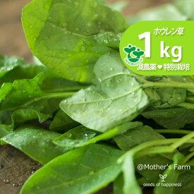 ほうれん草 ホウレン草 農薬90%カット 特別栽培【1kg】