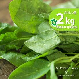 ほうれん草 ホウレン草 農薬90%カット 特別栽培【2kg】