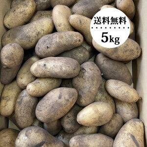 じゃがいも メークイン 5kg 有機肥料 訳あり【送料無料】