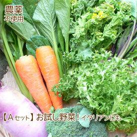 野菜セット 詰め合わせ お試しセット 農薬不使用 訳あり 不揃い【送料無料】