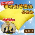 黄色い座布団