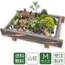 【父の日】盆栽 盆景 ミニ庭園 山荘M 【送料無料】