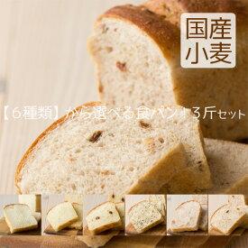 【送料無料】天然酵母 食パン 選べる3斤 お試しセット
