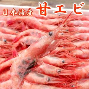甘エビ(大60匹)甘えび 子無し 刺身用 業務用 冷凍 日本海産【送料無料】