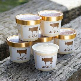 アイスクリーム 濃厚ミルクジェラート【6個セット】【送料無料】