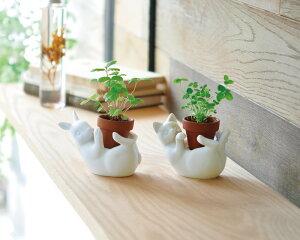聖新陶芸ポットフレンズウサギワイルドストロベリー景品ギフト底面給水ポットプレゼントインテリアハーブ栽培セット