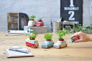 オートプランツカーミニバスミント観葉植物ガーデニング聖新陶芸ギフトプレゼント景品