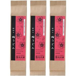 国産 紀州の梅うどん 100g×3袋 乾麺 福岡県産 メール便