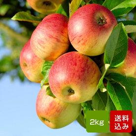 りんご 2kg 福岡県嘉麻産 敬老の日 ギフト 送料無料