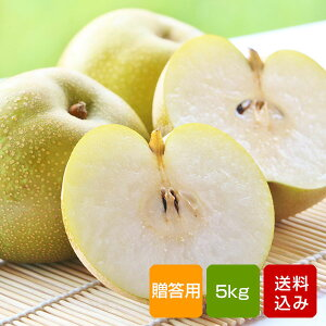 梨 幸水 贈答用 秀品 5kg 特別栽培 お中元 ご予約品