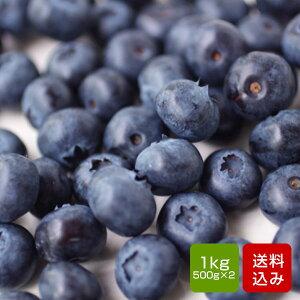 有機ブルーベリー 1kg入(500g×2) 無農薬 無化学肥料 除草剤不使用 長崎産
