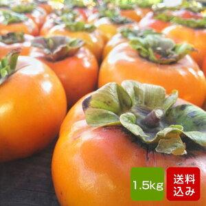 柿 西村柿 1.5kg 秀品 M-Lサイズ 福岡県産