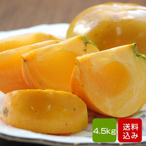 柿 太秋柿 4.5kg 秀品 2-3L 12-14玉 福岡県産 ギフト