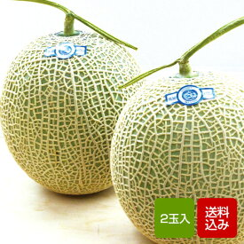 【送料無料】高級メロン 2玉入 お中元 ギフト