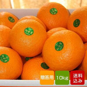 紅甘夏 贈答用 10kg入 蔵姫 大分県産 母の日 ギフト